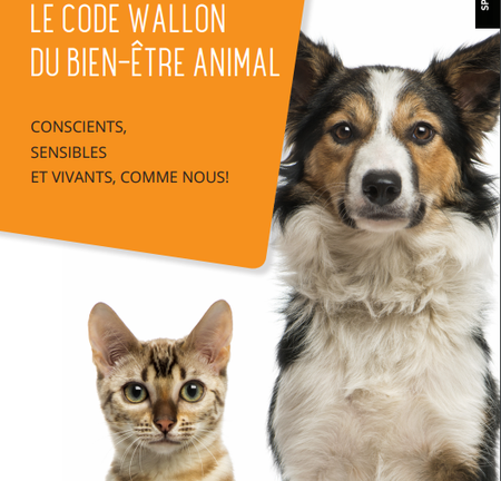 Nouveau décret du Bien-être animal