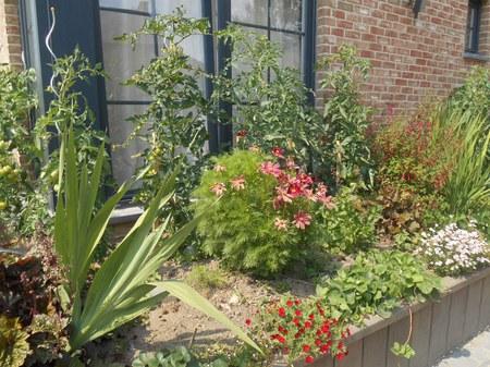 Concours :  Façades fleuries - Jardin de la biodiversité - Chapelles et potales fleuries